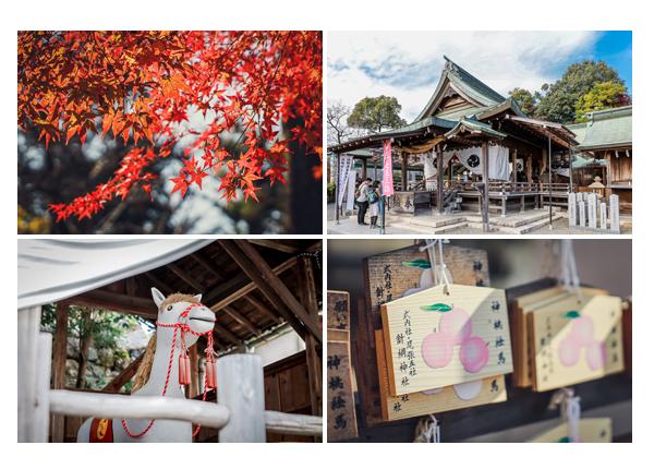 秋の針綱神社 愛知県犬山市 社殿 絵馬 モミジ
