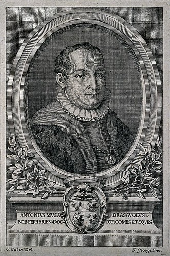 Antonio Musa Brasavola