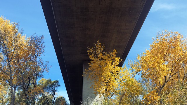 beneath the interstate