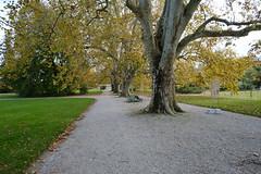 Jardin Botanique @ Genève