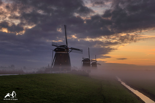 3 Mills in the Mist