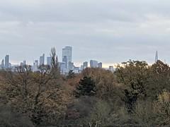 London from Hampstead Heath