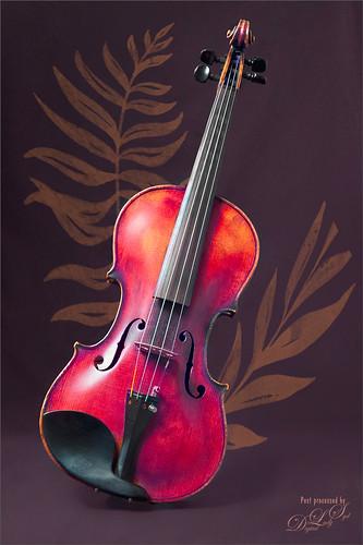 Pixabay image of a violin