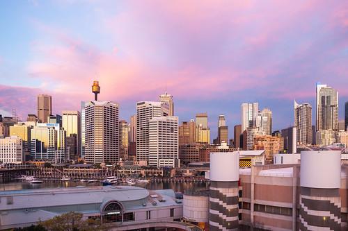 australia cbd cocklebay darlingharbour sunset sydney sydneyharbour tumbalong buildings