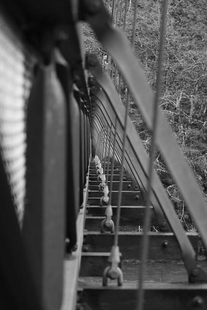 Trail of The Cedars suspension bridge, Skagit River