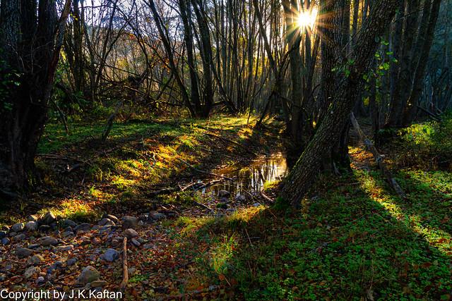 ....... and the Light makes its way ...., .......y la Luz se abre camino....On EXPLORE