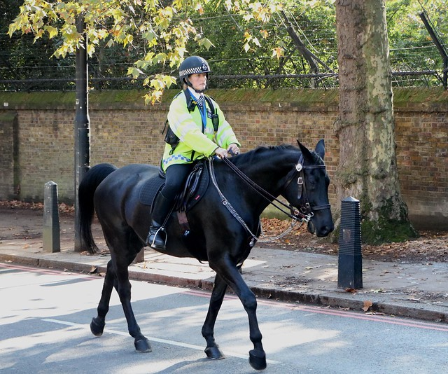 Metropolitan Police Service - Mounted