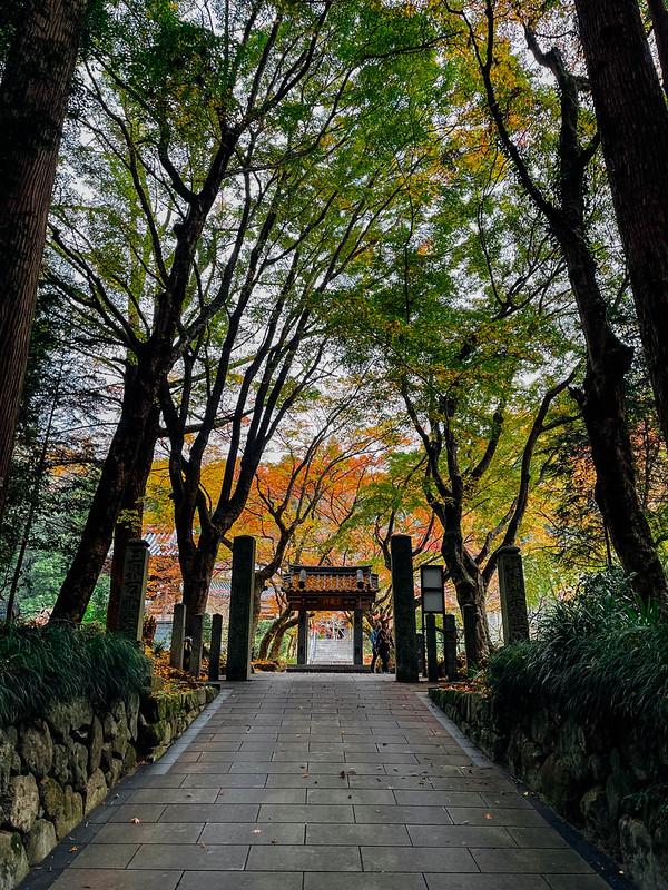 Iwayado_Park_01