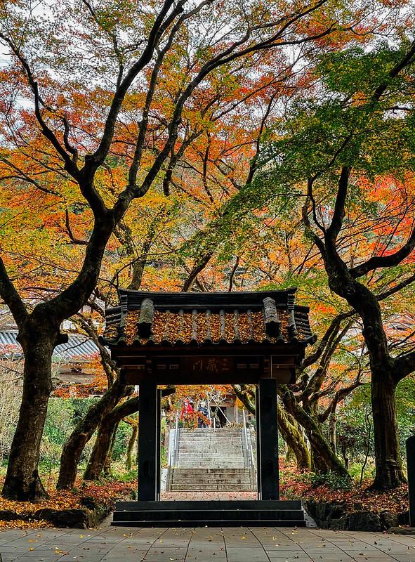 Iwayado_Park_02