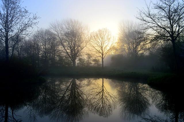 Reflections at a foggy sunrise. Nassaupark, Bovenkarspel, Netherlands.