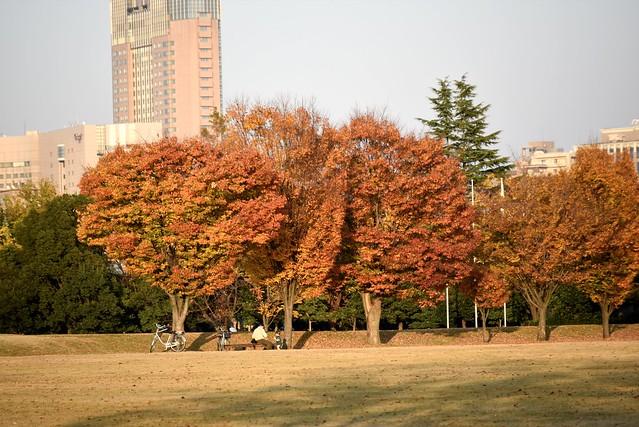 四高記念公園から市民芸術村へ