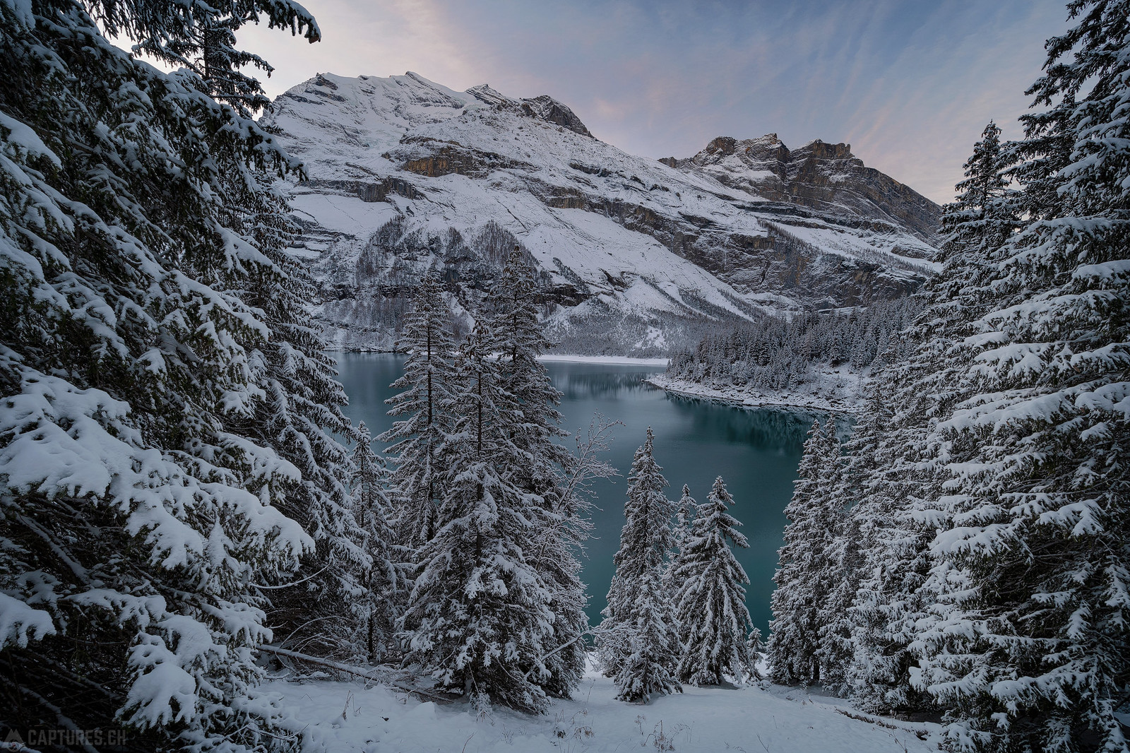 Lake and trees - Oeschinensee
