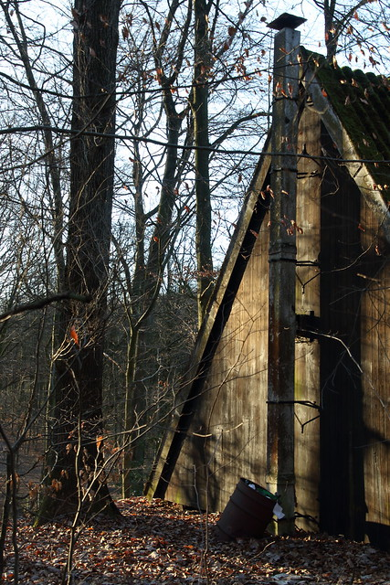The cabin in the woods (IV)
