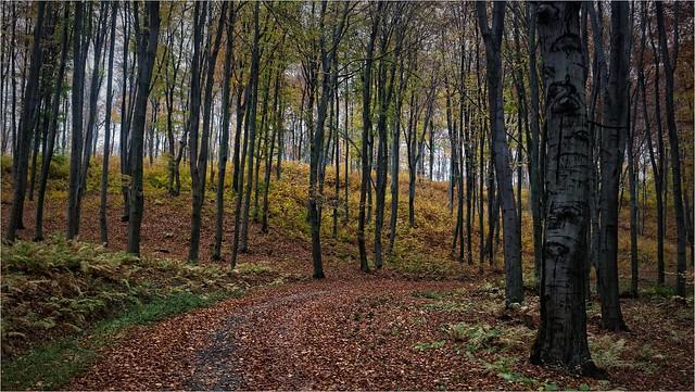 Jura. Poland