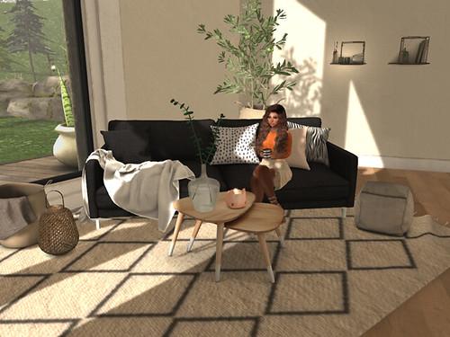 new home_farah (1)