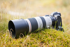 Canon EF 100-400mm IS L II