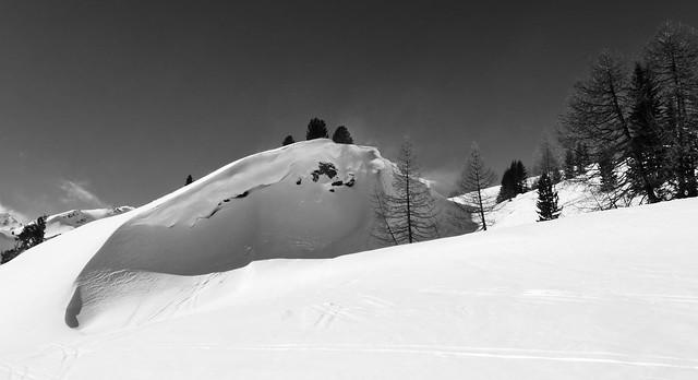 The Snowdrift