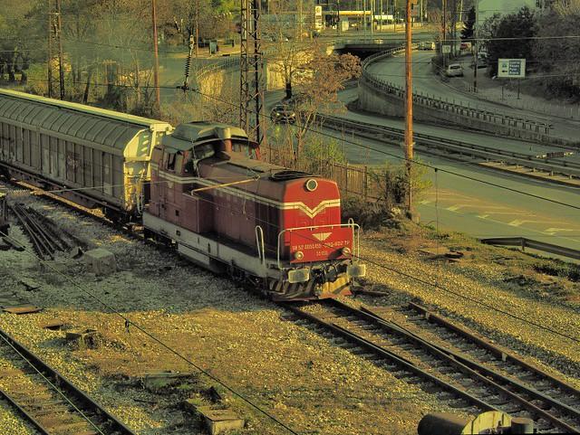 Diesel Engine BDZ 55155