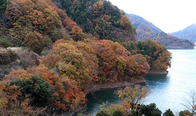 Lake Miyagase : Kanagawa Japan (in explore)