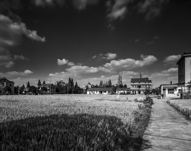 Haining Countryside Fomapan 100 Schneider 150 f45 8s Red And 2 Stop Hard Grad SMALL - 11-Nov-2020