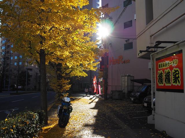 Shining street 2