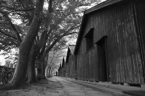 Sakata monochrome