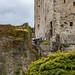 "<p><a href=""https://www.flickr.com/people/ausken/"">AusKen</a> posted a photo:</p>  <p><a href=""https://www.flickr.com/photos/ausken/50636601288/"" title=""Blarney Castle_14Jun19_132458_69_5DIV_01""><img src=""https://live.staticflickr.com/65535/50636601288_4f9f6155ca_m.jpg"" width=""160"" height=""240"" alt=""Blarney Castle_14Jun19_132458_69_5DIV_01"" /></a></p>"