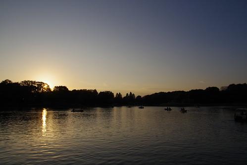 sunset japan park lake boat fun japon nippon sky light sun