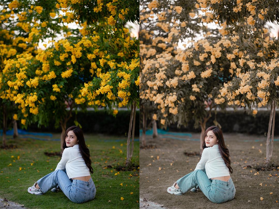 Gold-Flower-Lightroom-Tone-11
