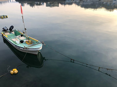Calm early morning waters