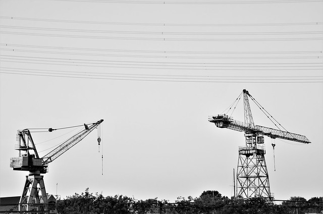 Cranes at Short Distance