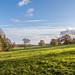 Parkland near Louth