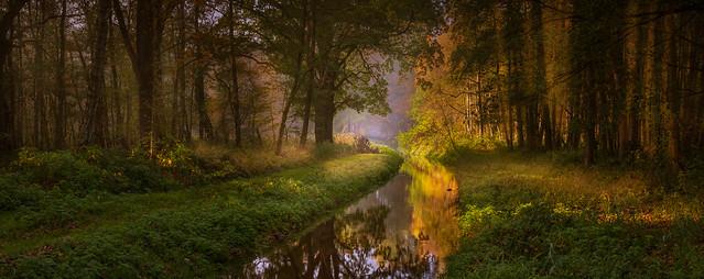 Stream in autumn colors