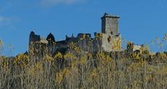 Ucero (Soria, Castilla-León, Sp) – El viejo castillo