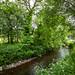 "<p><a href=""https://www.flickr.com/people/ausken/"">AusKen</a> posted a photo:</p>  <p><a href=""https://www.flickr.com/photos/ausken/50637347531/"" title=""Blarney Castle_14Jun19_132312_67_5DIV_01""><img src=""https://live.staticflickr.com/65535/50637347531_80e6ff6855_m.jpg"" width=""160"" height=""240"" alt=""Blarney Castle_14Jun19_132312_67_5DIV_01"" /></a></p>"