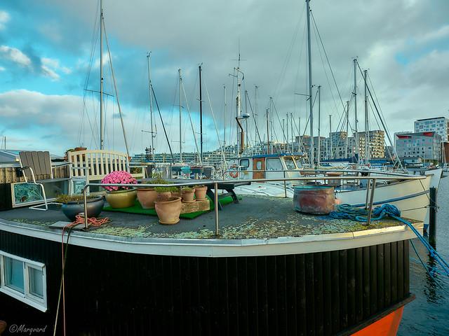 Ein Schiff mit Garten im Aarhuser Hafen