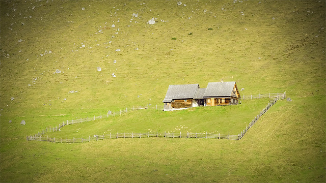_DSC30250 Alpine pasture