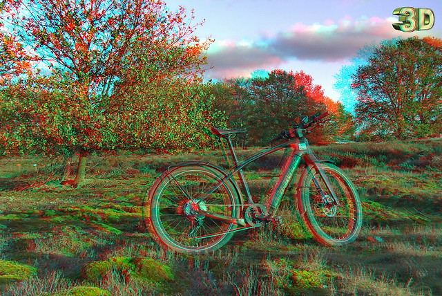 last rays of the sunset 3D
