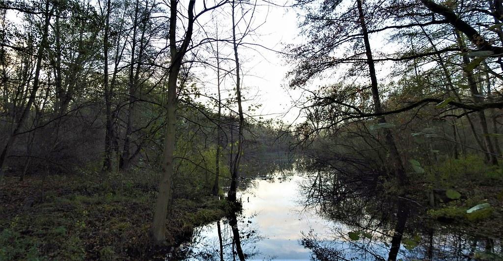 Revier Blankenfelde Herbst 2020 Bogenseekette