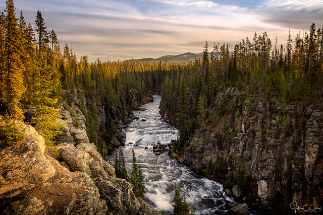 Lewis River overlook in Yellowstone National Park