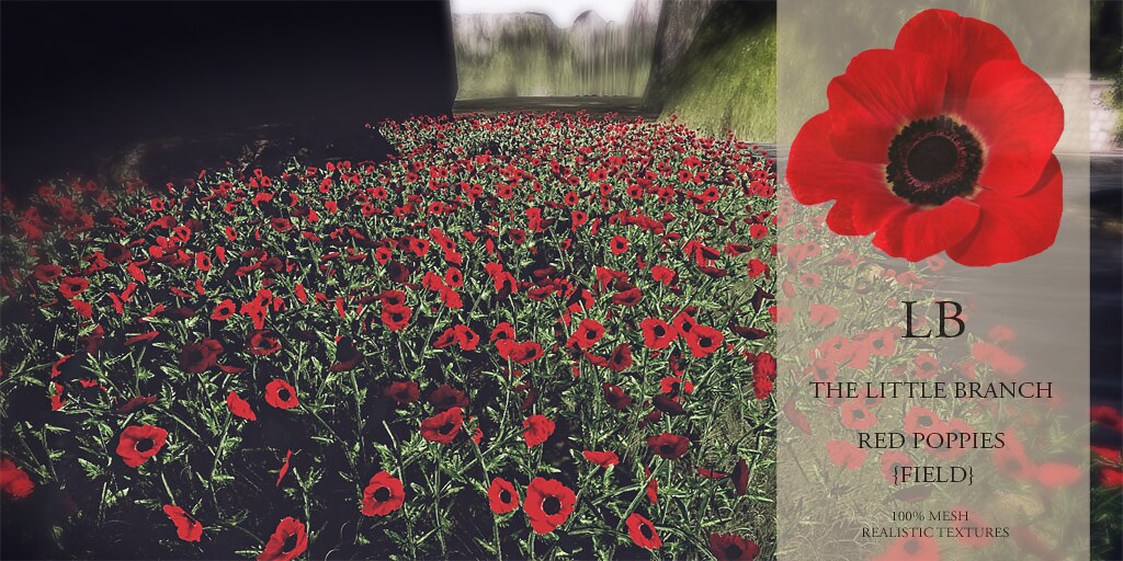 The Little Branch – Red Poppies{Field}- The Outlet