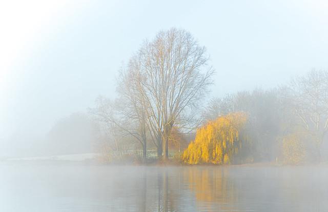 Last Autumn Mist