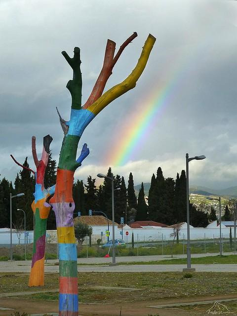 Y el arco iris pinto los arboles