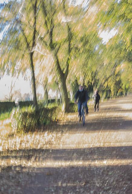 In movimento nel parco