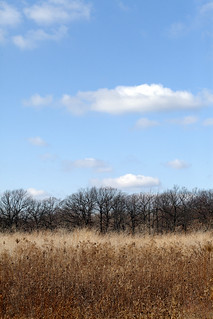 FORT SHERIDAN PRAIRIE AND CLOUDS