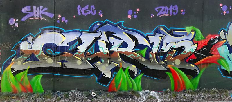 FroschChr15groß