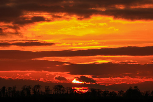 royston hertfordshire england therfieldheath sunset clouds sky orange unitedkingdom uk trees evening afternoon lightroom canoneos750d