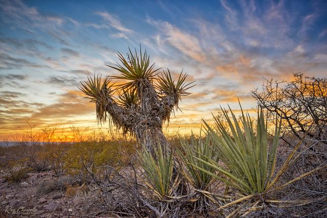 El Paso Sunset 11.23.20 [Explore]