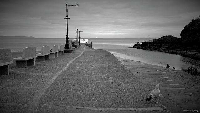 Looe Estuary. Sept 2020