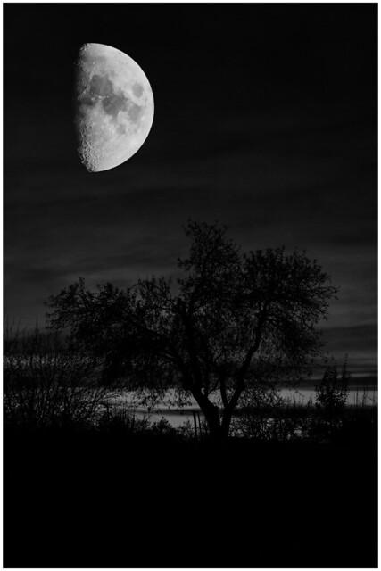 Las personas somos como la Luna, tenemos un lado oscuro que no enseñamos a nadiel